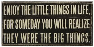 ENJOY THE LITTLE THINGS IN LIFE FOR SOMEDAY YOU WILL REALIZE THEY WERE THE BIG THINGS