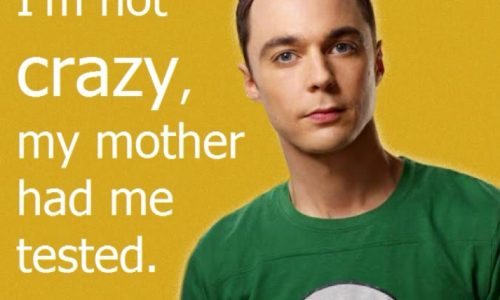 The Big Bang Theory siamo tutti un po' Sheldon!